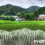 tanada-kyushu-hdr-japan-photo-guide-004