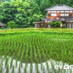 tanada-kyushu-hdr-japan-photo-guide-006