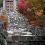 Japan Photo Guide Fall-026
