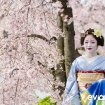 Maiko Portrait Session-09-japanphotoguide