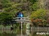 Tokyo and Kyoto-02-japanphotoguide