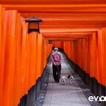 Fushimi-Inari-Shrine-003