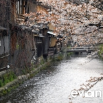 Kyoto-23-japanphotoguide