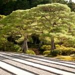 Kyoto-33-japanphotoguide