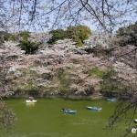 Tokyo-54-japanphotoguide