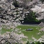Tokyo-55-japanphotoguide