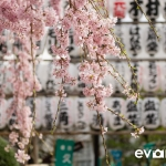 Tokyo-57-japanphotoguide