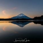 133-Mt-Fuji-Cherry-Blossom