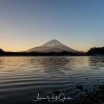 134-Mt-Fuji-Cherry-Blossom