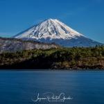 138-Mt-Fuji-Cherry-Blossom