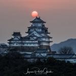 065-Himeji-Cherry-Blossom
