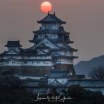 066-Himeji-Cherry-Blossom