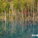 blue-pond-009