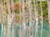 blue-pond-001