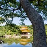 golden-pavilion-001