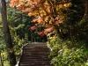 kamikochi-JapanPhotoGuide-045