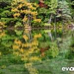 Myojin Pond-JapanPhotoGuide-024