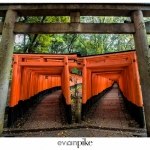 Japan-Photo-Guide-Fushimi-Inari-077