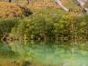 Taisho Pond-JapanPhotoGuide-034