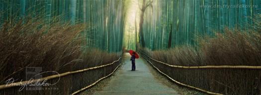 Красный зонтик с бамбуковыми струч