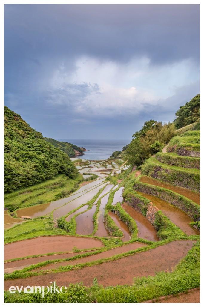 Hamanoura-Rice-Terrace-JapanPhotoGuide-01