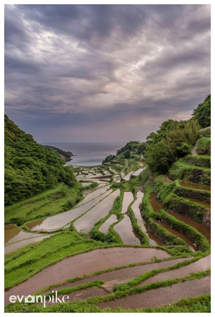 Hamanoura-Rice-Terrace-JapanPhotoGuide-04