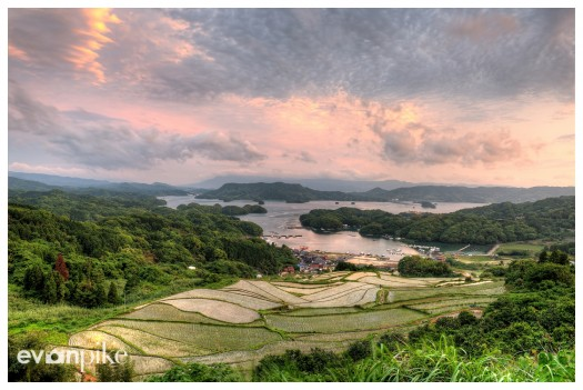 Oura-Rice-Terrace-JapanPhotoGuide-01