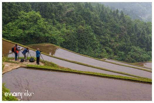 Warabino-Rice-Terrace-JapanPhotoGuide-07