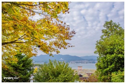Japan Photo Guide MIyajima014