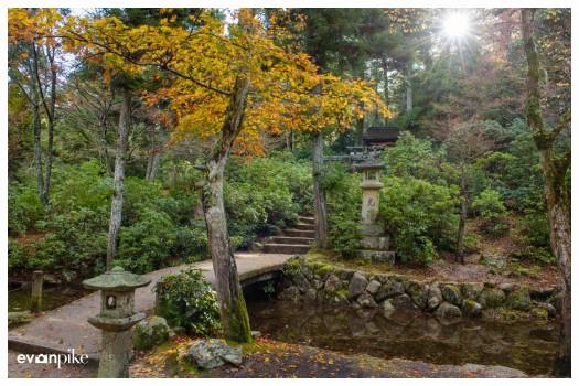 Japan Photo Guide MIyajima026
