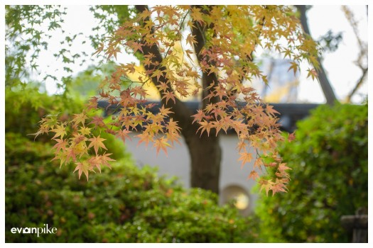 Japan Photo Guide Okayama 005