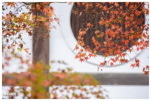 Japan Photo Guide Tofukuji 003