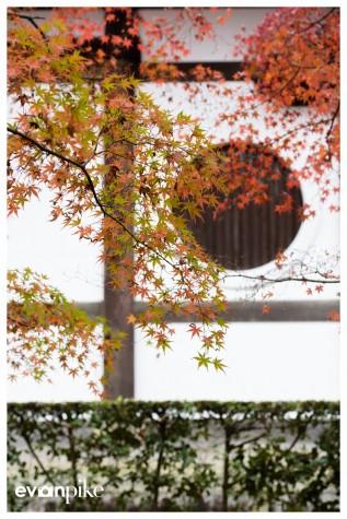 Japan Photo Guide Tofukuji 005