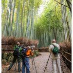 Arashiyama Japan Photo Guide Bamboo 108