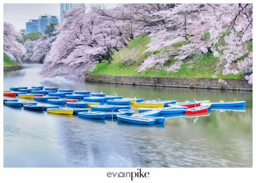 Japan Photo Guide Chidorigafuchi Tokyo 002