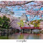 Japan Photo Guide Himeji 056