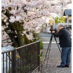 Japan Photo Guide Himeji 068