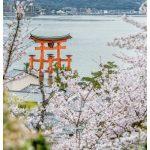 Japan Photo Guide Miyajima 019