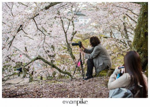 Japan Photo Guide Miyajima 030