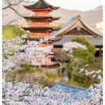 Japan Photo Guide Miyajima 035