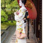 Kyoto Japan Photo Guide Maiko 094