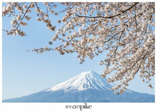 Kawaguchiko Mt Fuji Japan Photo Guide130