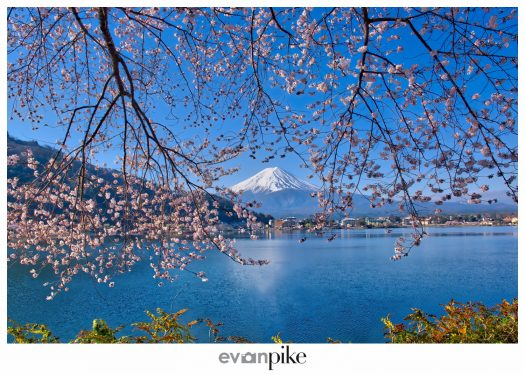 Kawaguchiko Mt Fuji Japan Photo Guide133