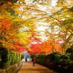 Japan-Photo-Guide-3481
