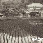 tanada-kyushu-hdr-japan-photo-guide-005