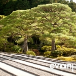 japan-photo-guide-319
