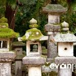 japan-photo-guide-334