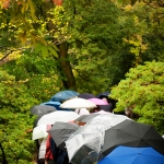 japan-photo-guide-343