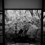 japan-photo-guide-348
