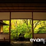 japan-photo-guide-349
